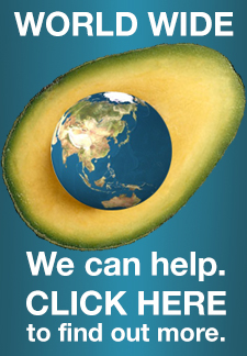 avopro avocado world ad
